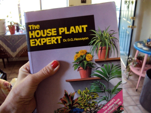 The Houseplant Expert