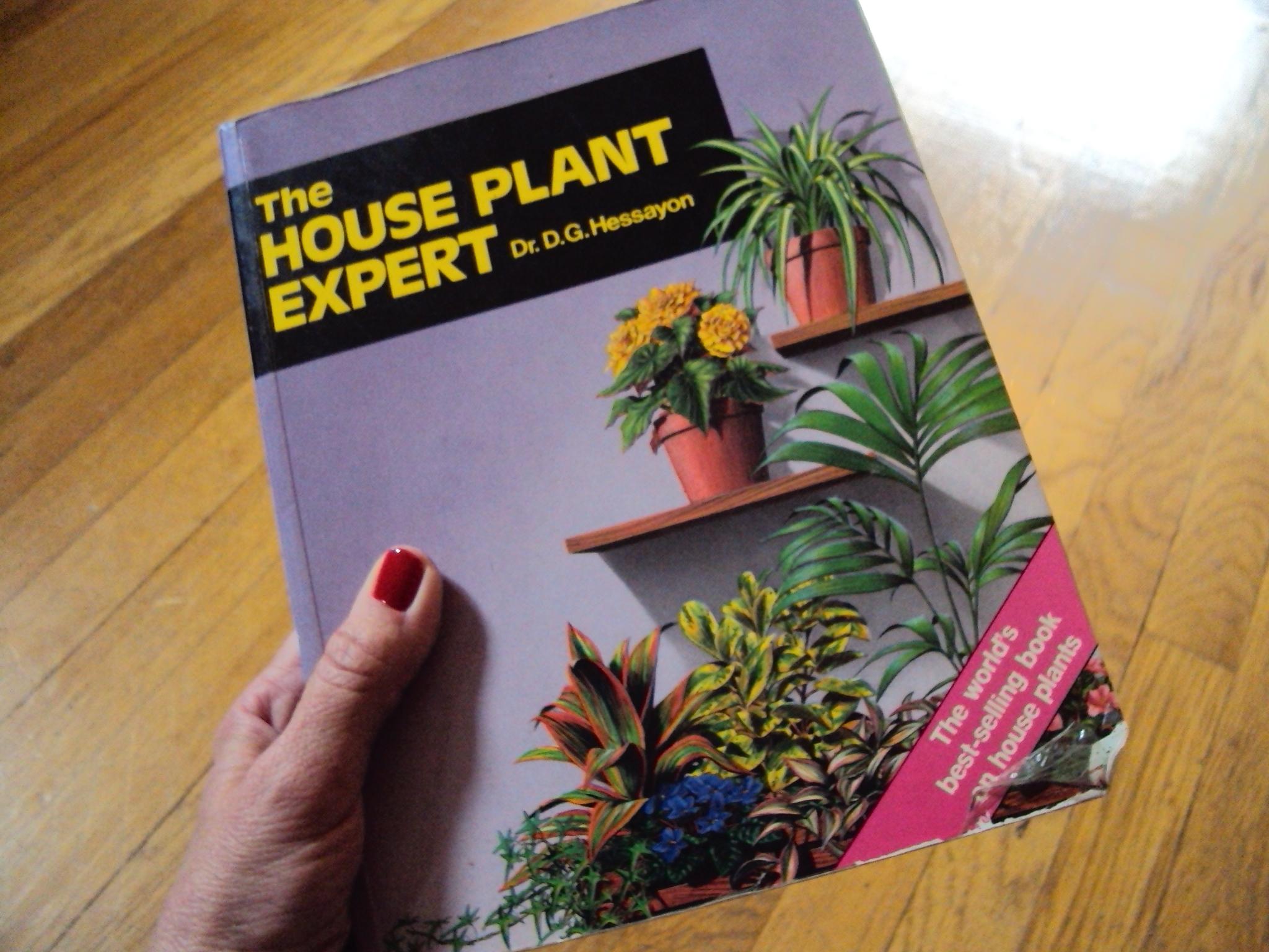 The houseplant expert hessayon