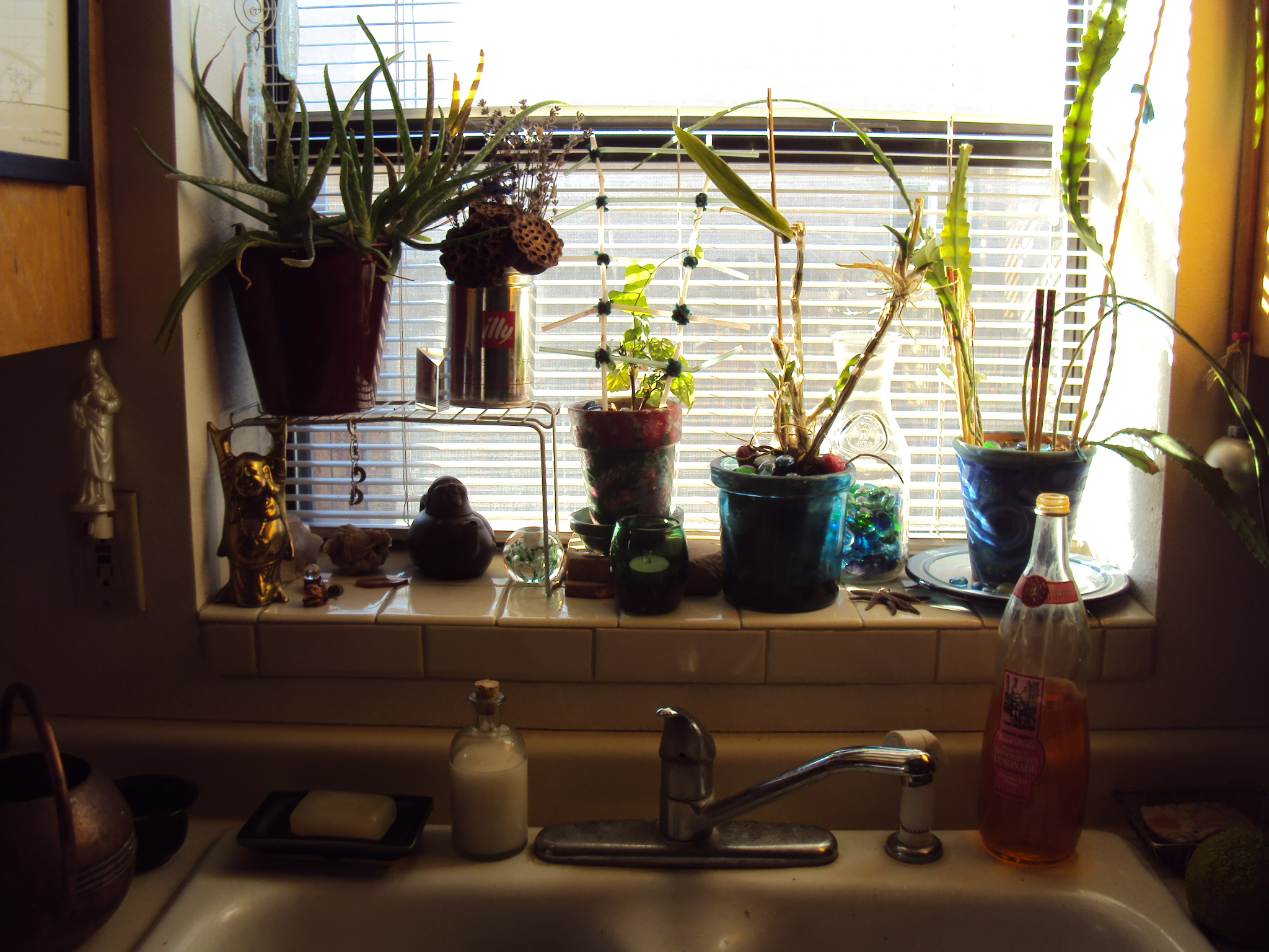 Kitchen window for plants - I