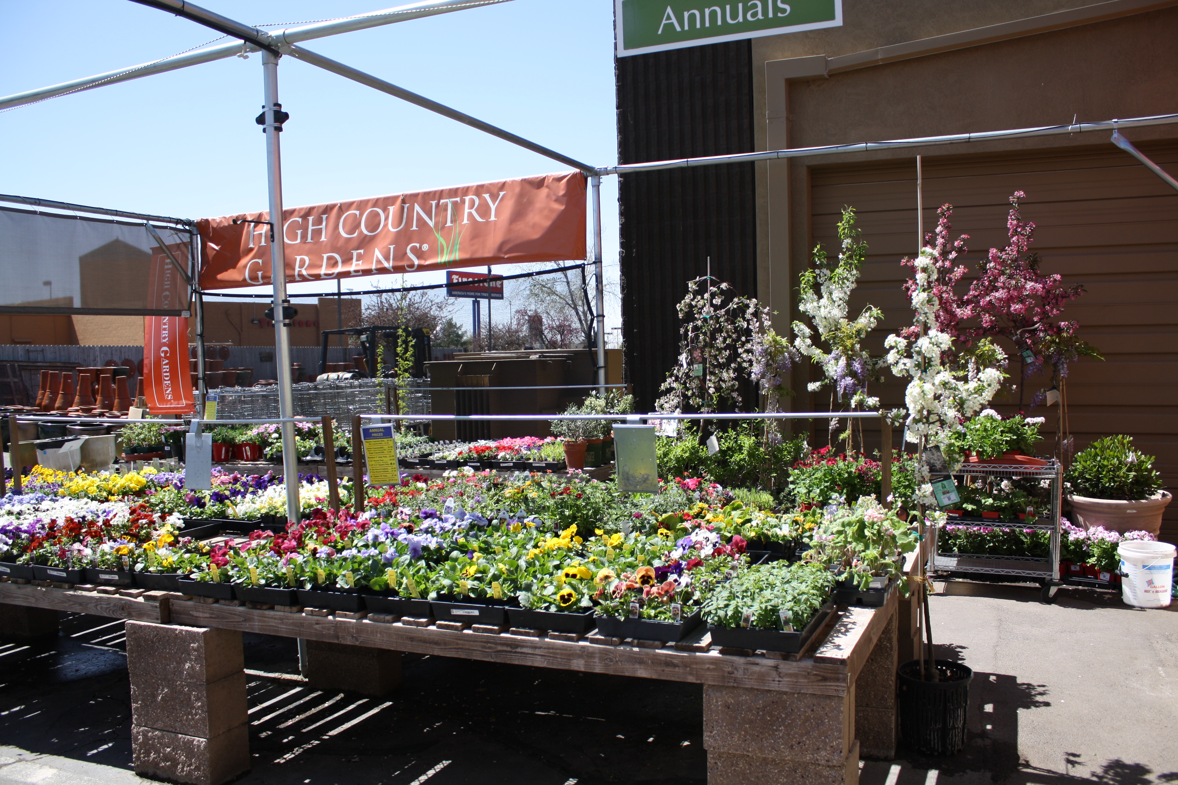 best plant nurseries in Albuquerque Good To Grow