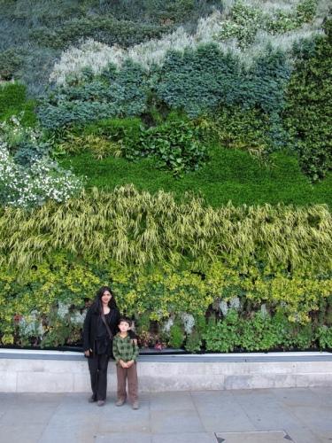 Van Gogh In Plants In Trafalgar Square Good To Grow