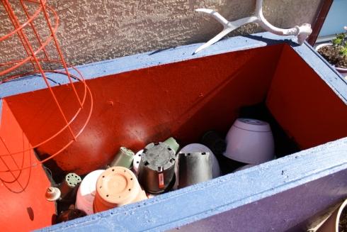 Good To Grow, Liza's photos, my backdoor container garden