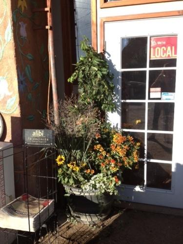 Good To Grow, Liza's photos, update on Golden Crown Panaderia
