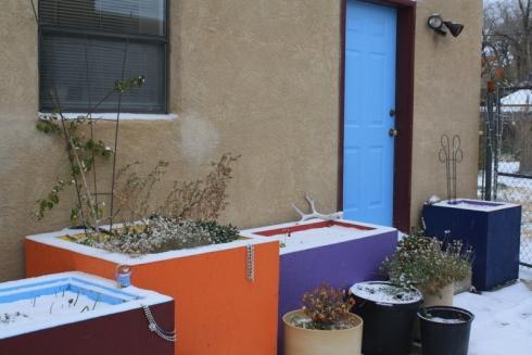 Good To Grow, Liza's photos, Albuquerque snow