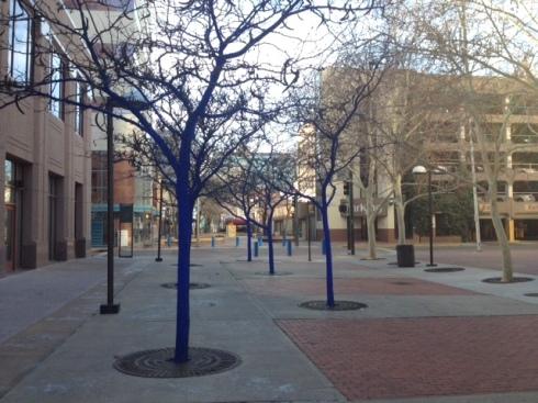 Good To Grow, Liza's photos, blue trees