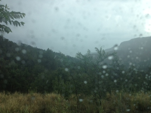 Good To Grow, Liza's photos, rain in the Jemez Mountains