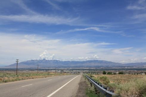 Good To Grow, Liza's photos, Albuquerque