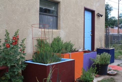 Good To Grow, Liza's photos, backdoor container garden oasis