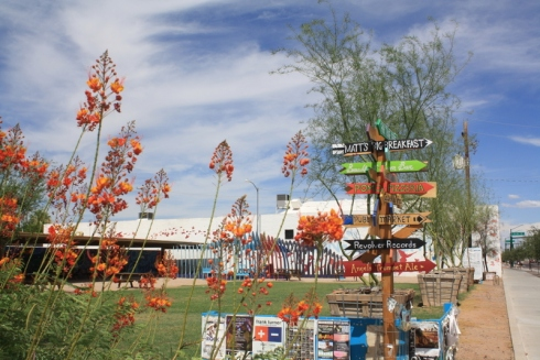 Good To Grow, Liza's photos, sites around Phoenix