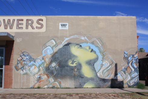 Good To Grow, Liza's photos, murals in Phoenix